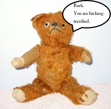 Sad-teddy-bear-1a